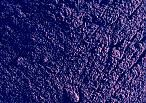 La Saponaria alcanna tiontoria colorante viola