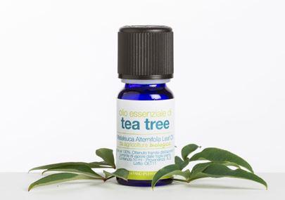 LaSaponaria olio essenziale di tea tree